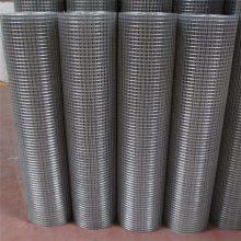 抹墙电焊网 大丝电焊网 养羊铁丝网