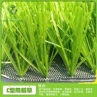 广州绿塔厂家直销5公分足球场人造草坪 运动场馆铺设地毯草坪 五人制足球场专用