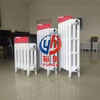 新艺666 TXY2-6-8(10)铸铁暖气片双管对流供应商