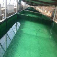 生产篷布鱼池水池帆布易折叠水池价格帆篷布养殖帆布鱼池好处三防产业用布农业