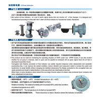 承滨牌流量指示器&BLZ1-80-50/38流量指示器