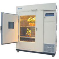ZSX1000GS小型植物生长箱,实验室植物生长箱