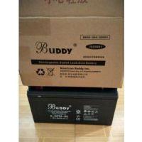 宝迪BUDDY蓄电池6-FM-24/12V24AH一级代理商报价|应急电源蓄电池