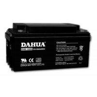 DAHUA大华蓄电池DHB12120铅酸蓄电池12v12ah产品报价