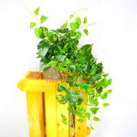 假绿萝藤条哪家质量好?浩晟 吊兰藤条品质好 可定制主题色彩 仿真绿植