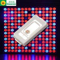 阿凡达 LED植物生长灯 光源 5730 0.2W 红光灯珠 660nm 植物灯专用 工厂直销