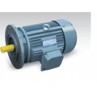 供应山东开元电机有限公司 密州牌 Y15L2-4-200kw 高效节能电动机01852