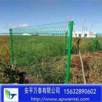 铁丝防护网 浸塑防护围栏 街道绿化网栏