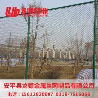 上海球场护栏网 塑料围网 宁波球场围网