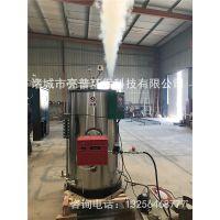 燃气蒸汽发生器亮普LP生产厂家,低压安全性高