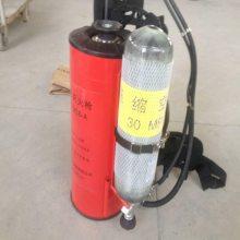 厂家直销QWMB12脉冲气压喷雾水枪