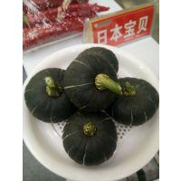 日本宝贝南瓜种子