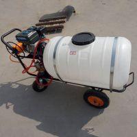 汽油高压小麦打药机 高度可调玉米喷雾器厂家 自走式打药车
