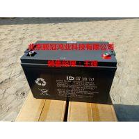 雷迪司蓄电池MF12-38免维护价格