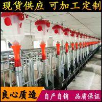 全自动化料线 自主设计安装猪场料线 自动饲喂设备