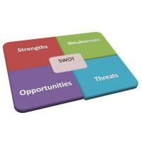 风险思维导向-SWOT分析-智科精细