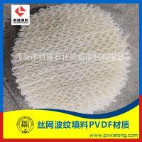 PVDF孔板波纹填料250Y生产厂家
