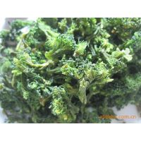 脱水西兰花 工厂原产地 源头厂家 绿色蔬菜 顶能脱水蔬菜食品