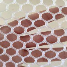 白色塑料平网 养殖塑料网 小孔养殖网