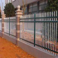 直销小区庭院阳台铁艺隔离喷塑防护栏 学校安全防盗护栏 锌钢围栏