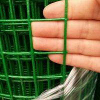 养殖网厂家【绿色方孔铁丝网】一卷电焊网多少钱咨询安平飞创