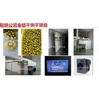 更简单烘干方法的智烘牌金桔干燥房ZH-JN-HGJ03,金桔烘干机价钱大约多少一套
