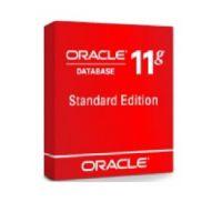 2017Oracle数据库11G标准版 代理商服务 正版购买方案