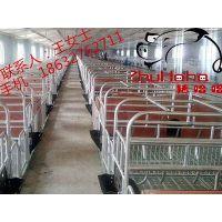 河北猪哈哈生产2.1*3.6新型母猪产床