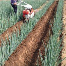 西红柿施肥坐果开沟机 种植大棚作畦打垄机 圣通开沟机