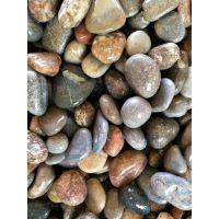 博淼直销黑色 白色 铺路鹅卵石 雨花石 洗米石 白石