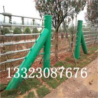 镀锌缆索护栏价格@湖边山区道路缆索护栏网@河北缆瑞厂家