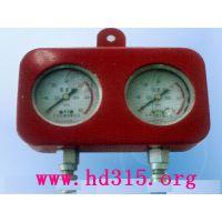 中西耐震式综采液压支架专用测压双表 型号:LX48-SY-60库号:M351065