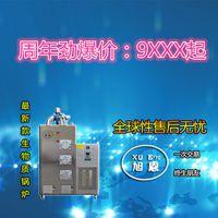 旭恩室燃炉80KG生物质颗粒蒸汽发生器批发价