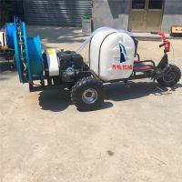 普航柴油机三轮自走式喷药机 小麦水稻农作物打药机 高压机动打药机