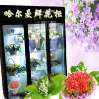 鲜花保鲜柜鲜花冰箱花店冰柜花店保鲜柜花店鲜花冷藏柜花店展示柜