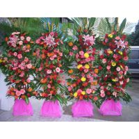 双拥路花店_南宁双拥路附近哪有花店卖花束_装婚车15296564995