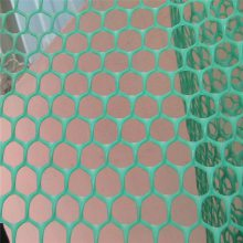 家禽养殖塑料网 小鸡育雏塑料网 水池养殖网