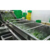 生产秋葵加工设备,秋葵清洗杀青流水线,汇康制造批发