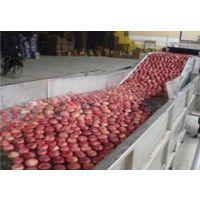 苹果鼓泡清洗机 优质水果气泡式清洗机 汇康机械厂家