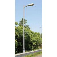 供应城市公路 主干道 照明路灯 价格低 品质保证