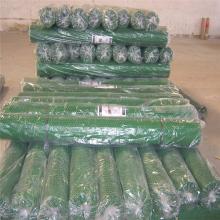 批发白色塑料平网 家禽养殖防护网 聚乙烯塑料平网