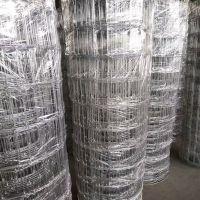 热卖1.8米高镀锌钢丝鹿网,哈尔滨养鹿网,安平鹿网厂家