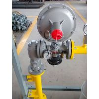 米易县润丰小区单元燃气调压器区域调压阀RTZ