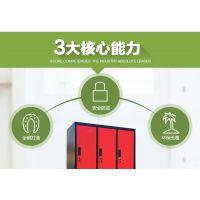 加厚钢制柜财务凭证柜彩色更衣柜