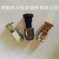 轮胎螺栓、螺丝、轮毂螺栓、车锅丝厂家定制 规格齐全