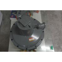 美国ITRON B38燃气减压阀 B38N燃气调压器 电磁阀 稳压阀