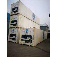 上海士乾常年出售出租——2手冷藏集装箱,冷冻集装箱