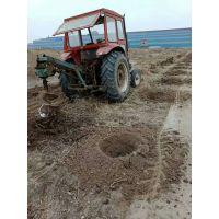 30直径栽树苗挖坑机 果树苗木基地栽树挖坑机