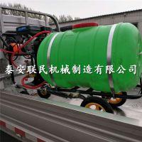 泰安联民 供应手推式园林绿化喷水机 路面除尘清洗机 买多减多