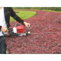 温州茶树修剪绿篱机 双刃往复式绿篱机 绿化带专用修剪机